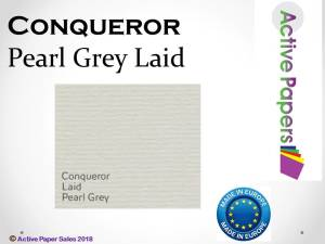 Conqueror Pearl Grey Laid 100gsm non-watermarked