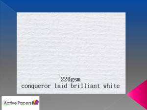 Conqueror White Laid 220gsm 12x12 25 sheets