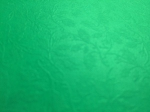Green Holly Embossed Card 220gsm A4 10 sheets